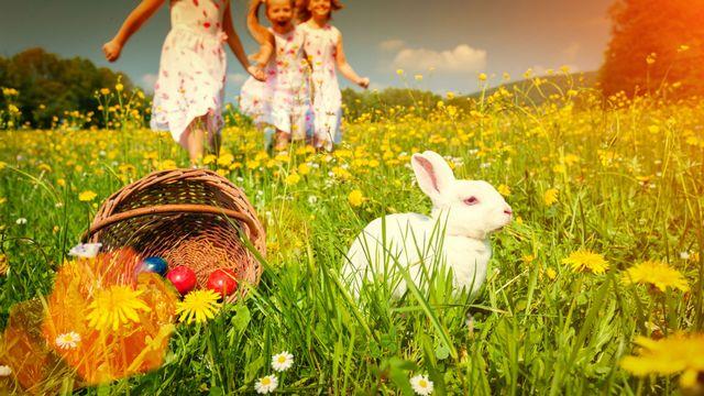 Prendre l'air à Pâques [© Kzenon - Fotolia]
