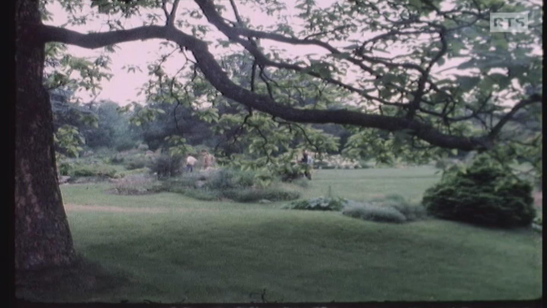 Le Jardin botanique de Genève, un véritable Eden