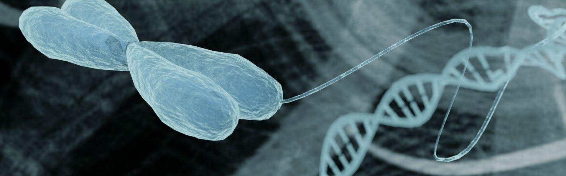 Le dossier sur la bioinformatique de RTS Découverte [© catalin - Fotolia]