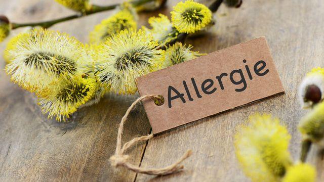 Allergies [© Printemps - Fotolia]