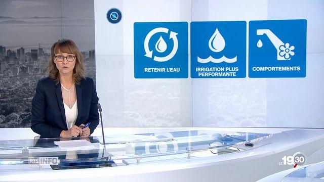 """""""En 2050, une ville sur six devra faire face à des pénuries d'eau"""" [RTS]"""