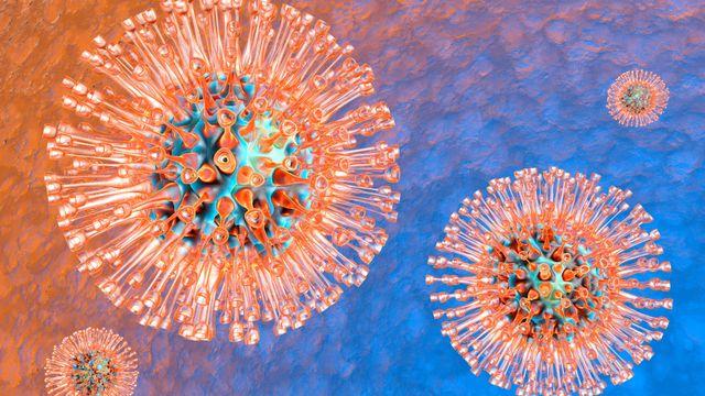 Le virus de l'herpès [© Spectral-Design - Fotolia]