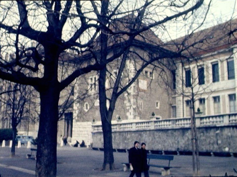 Le premier bourgeon du marronnier de la Treille à Genève annonce le printemps. [RTS]