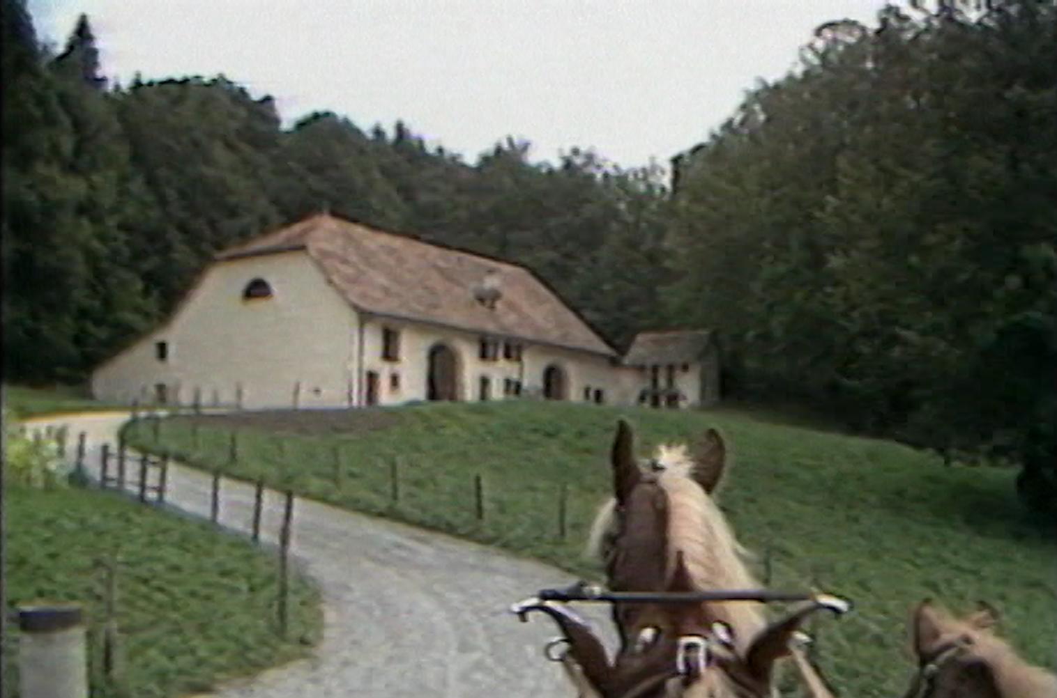 Visite à Ballenberg