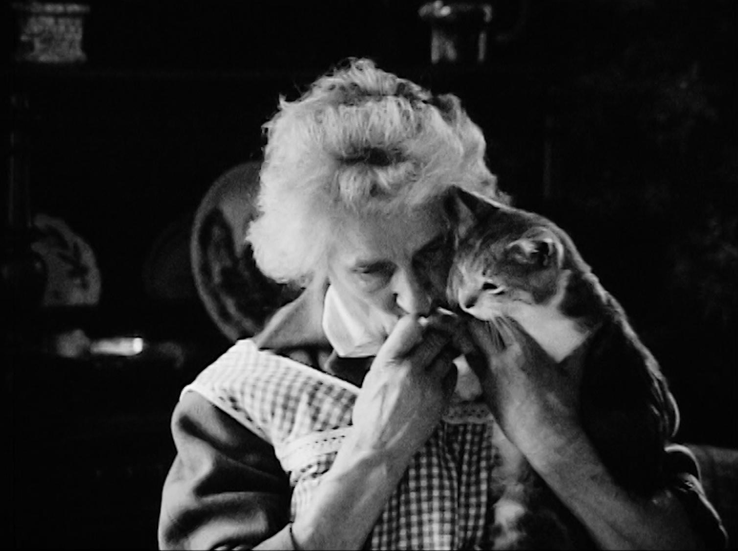 La dame aux chats