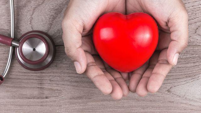 Le dossier sur le coeur de RTS Découverte. [© bluebay2014 - Fotolia]