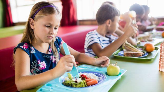 """L'assiette des écoliers est au menu d'""""On en parle"""". [WavebreakmediaMicro - Fotolia]"""