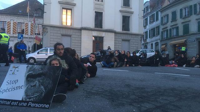 Les militants antispécistes se sont installés sur la route au centre d'Aubonne (VD). [Séverine Chave - RTS]
