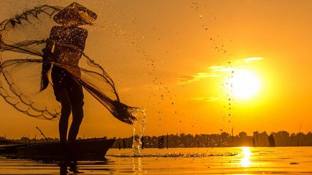 Le dossier sur la pêche de RTS Découverte. [© chaisiri - Fotolia]