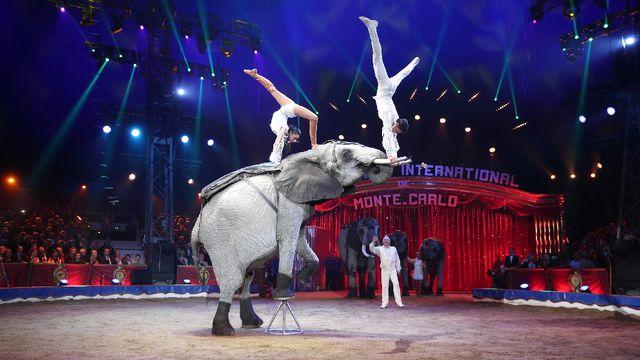 2016. 40ème Festival Internationale du Cirque de Monte Carlo [RTS/]