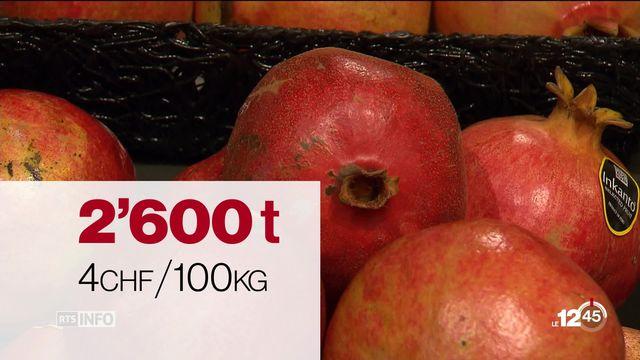 Les agriculteurs suisses opposés à la suppression des droits de douane à l'importation sur les fruits exotiques [RTS]