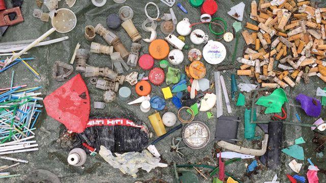 Les déchets ramassés sont ensuite triés, comptés et photographiés. [Pauline Vrolixs - RTS]