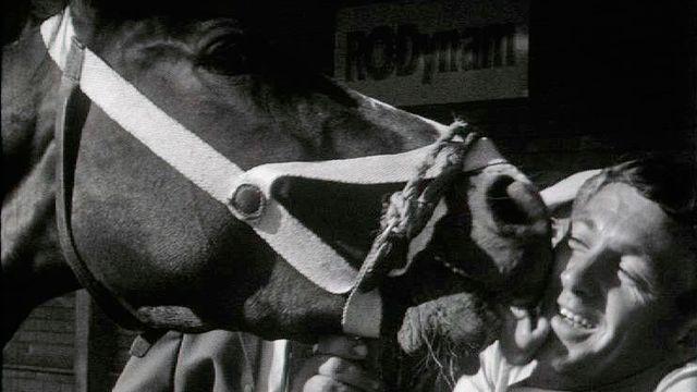 Un baiser de cheval. [RTS]