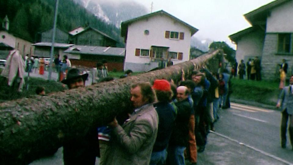 Les habitants de Praz-de-Fort rassemblent leurs forces pour ériger l'arbre de mai. [RTS]