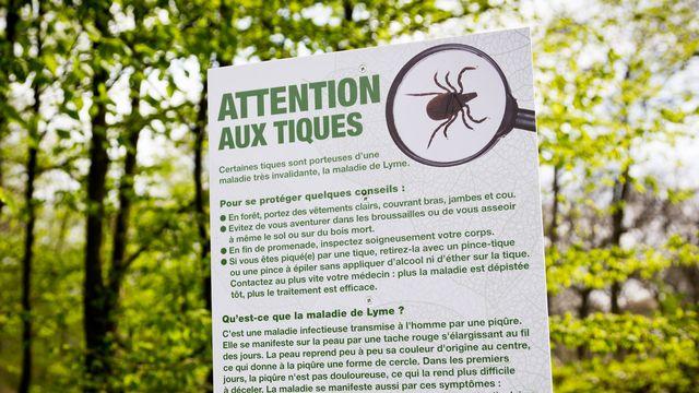 Affiche d'information et de prévention sur les tiques, en France. [GARO / Phanie - AFP]