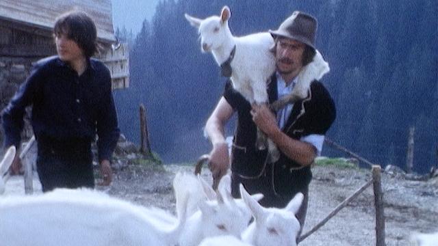 Les chèvres montent à l'alpage, Vaud, 1975. [RTS]