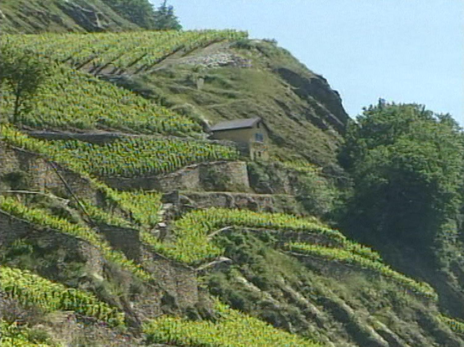 Murs de pierre du Valais