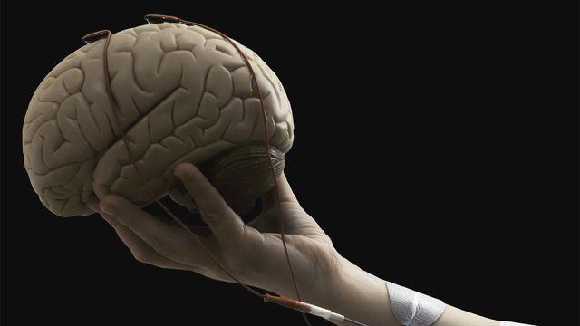 Des chercheurs de l'EPFL ont démontré qu'en associant une interface cerveau-machine (BCI) et la stimulation électrique fonctionnelle (FES), des victimes d'accident vasculaire cérébral recouvraient un plus grand usage de leur bras paralysé, même des années après l'événement. CNBI EPFL [CNBI - EPFL]