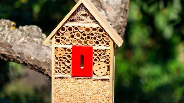 Un hôtel à insectes. [imfotograf - Fotolia ]