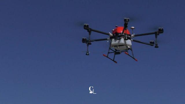 VD : Sulfatage des vignes avec un drone, la nouvelle révolution [RTS]