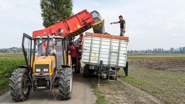 L'initiative exige que la Suisse adopte des normes plus strictes dans la production de denrées alimentaires. [Gaëtan Bally - Keystone]