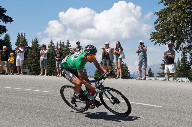 Le Slovaque Peter Sagan pourrait profiter des abandons d'autres sprinteurs. [Christophe Ena - AP/Keystone]