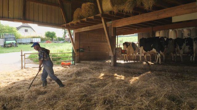 Reprendre une ferme : quand les jeunes poussent [RTS]