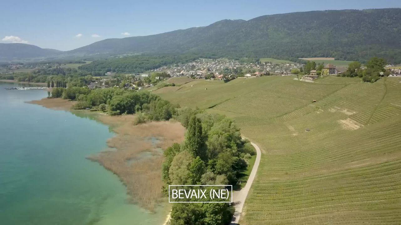 Découverte, au large de l'Abbaye de Bevaix, d'un site palafittique protégé par l'UNESCO. [RTS]