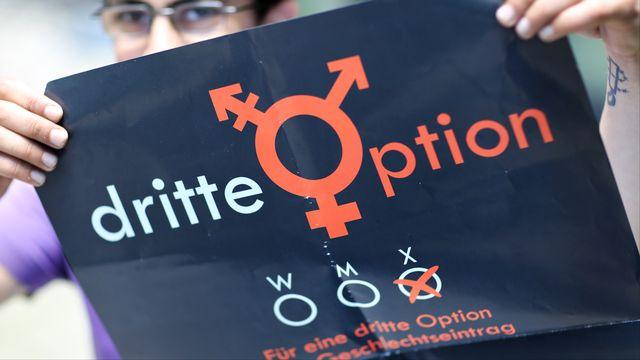 Une personne milite pour l'introduction d'une troisième option - à part le masculin et le féminin - au moment de définir le genre d'une personne. [Jan Woitas - AFP]