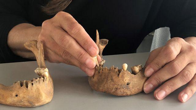 Des dents préhistoriques dans les mains de la bioanthropologue Jocelyne Desideri. Catherine Erard RTS [Catherine Erard - RTS]
