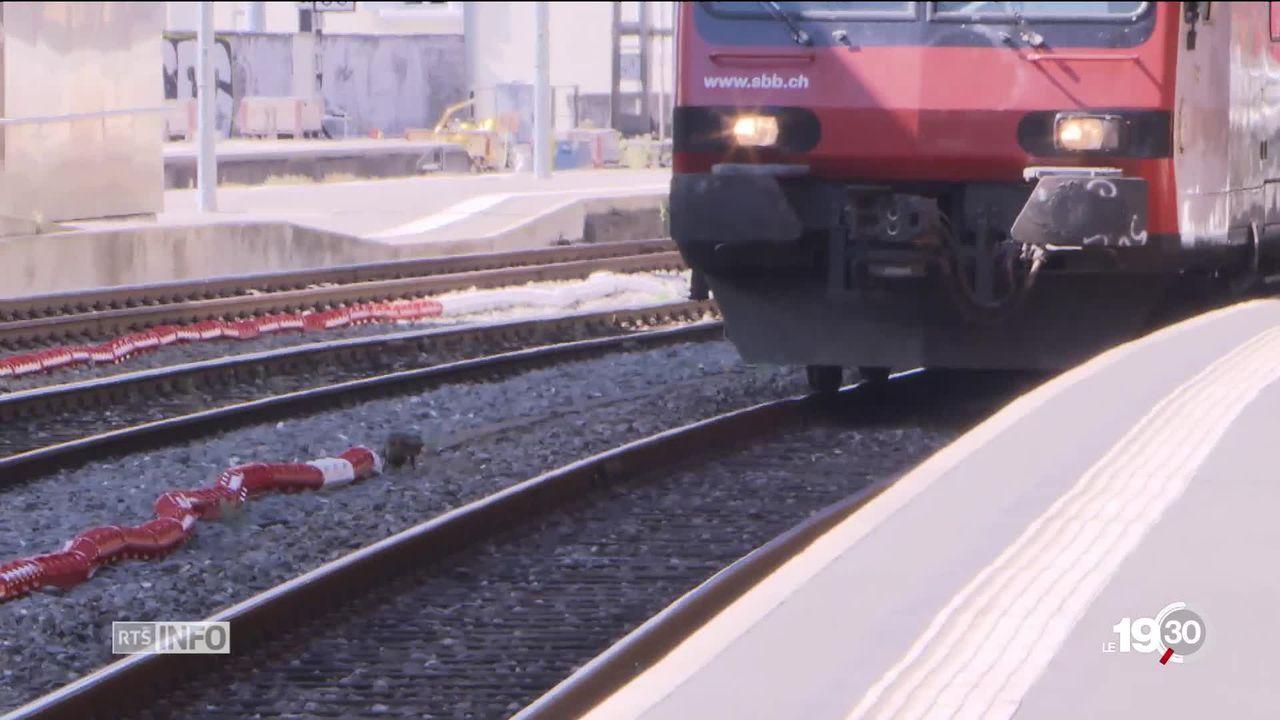Suicides sur les voies ferroviaires. Il y a une nécessité de prévention. Les CFF veulent installer des barrières. [RTS]