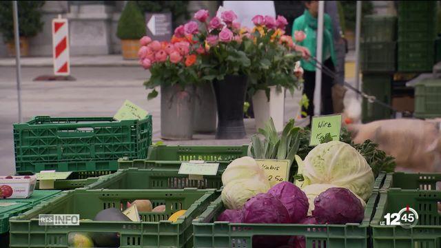 Deuxième sondage SSR, votations du 23 septembre: net recul du oui pour les deux initiatives alimentaires. [RTS]