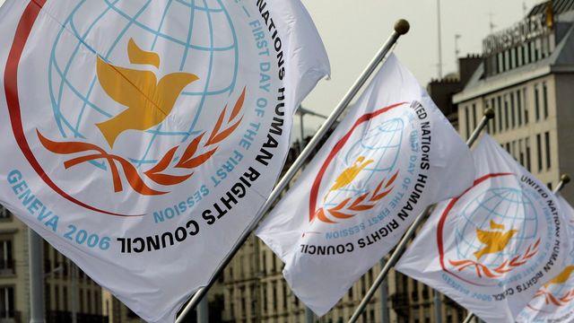 Des drapeaux affichant le logo du Conseil des Droits de l'homme. [Martial Trezzini - Keystone]