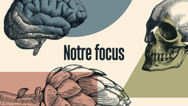 Le focus de RTS Decouverte [RTS]