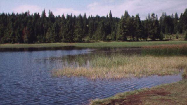Les étangs du Jura [RTS]