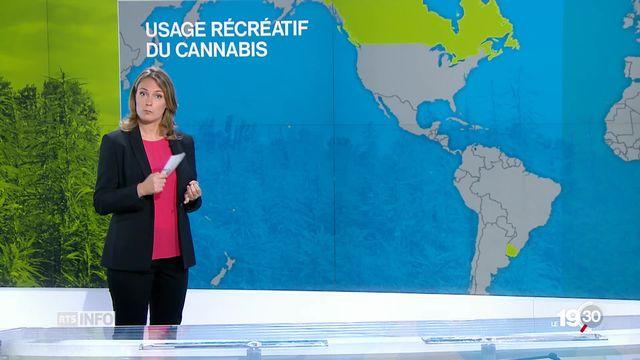 """Cannabis: """"La Suisse est encore très loin du cas canadien."""" Analyse de Marie-Emilie Catier [RTS]"""
