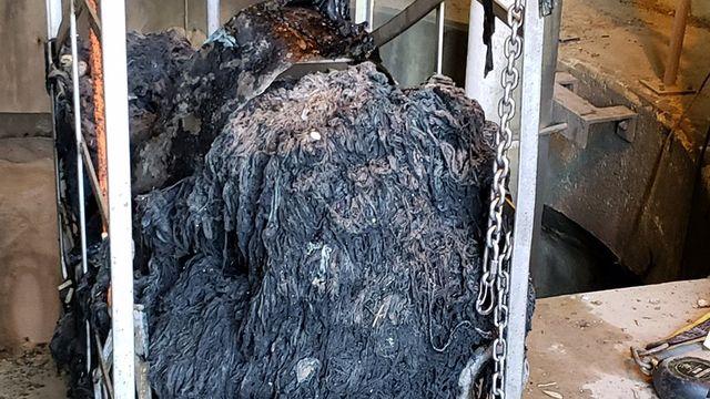 Une montagne de déchets extraite des canalisations à Charleston en Caroline du Sud. [Charleston Water System]