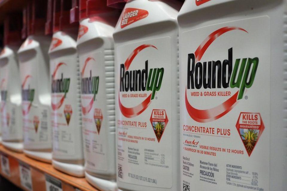 Le Roundup, un des herbicides de Monsanto auquel Dewayne Johnson a été exposé et qui aurait causé son cancer. [Robyn Beck  - AFP]
