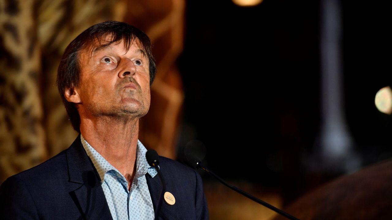 L'ancien ministre français de la transition écologique Nicolas Hulot est sorti d'un silence de trois mois jeudi soir sur France 2. [Gerard Julien - Reuters]