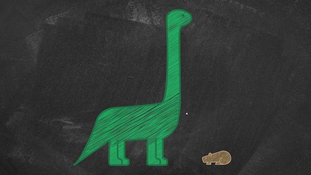 Jurassica - Les mammifères ont-ils côtoyé les dinosaures? [RTS]