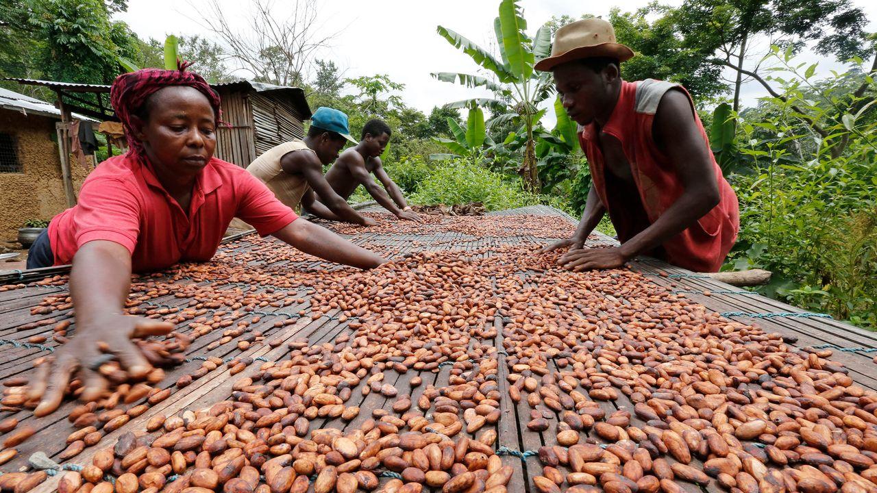 Travail des fèves de cacao au Ghana. [Thierry Gouegnon - Reuters]