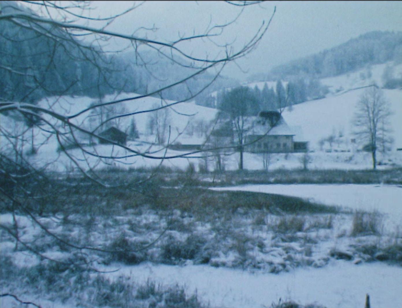 Au coeur du Jura en hiver