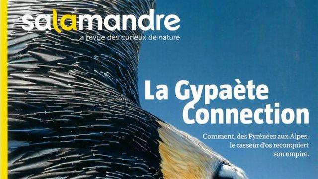 La couverture de La Salamandre n° 249 des mois de décembre 2018-janvier 2019. [Salamandre.net]