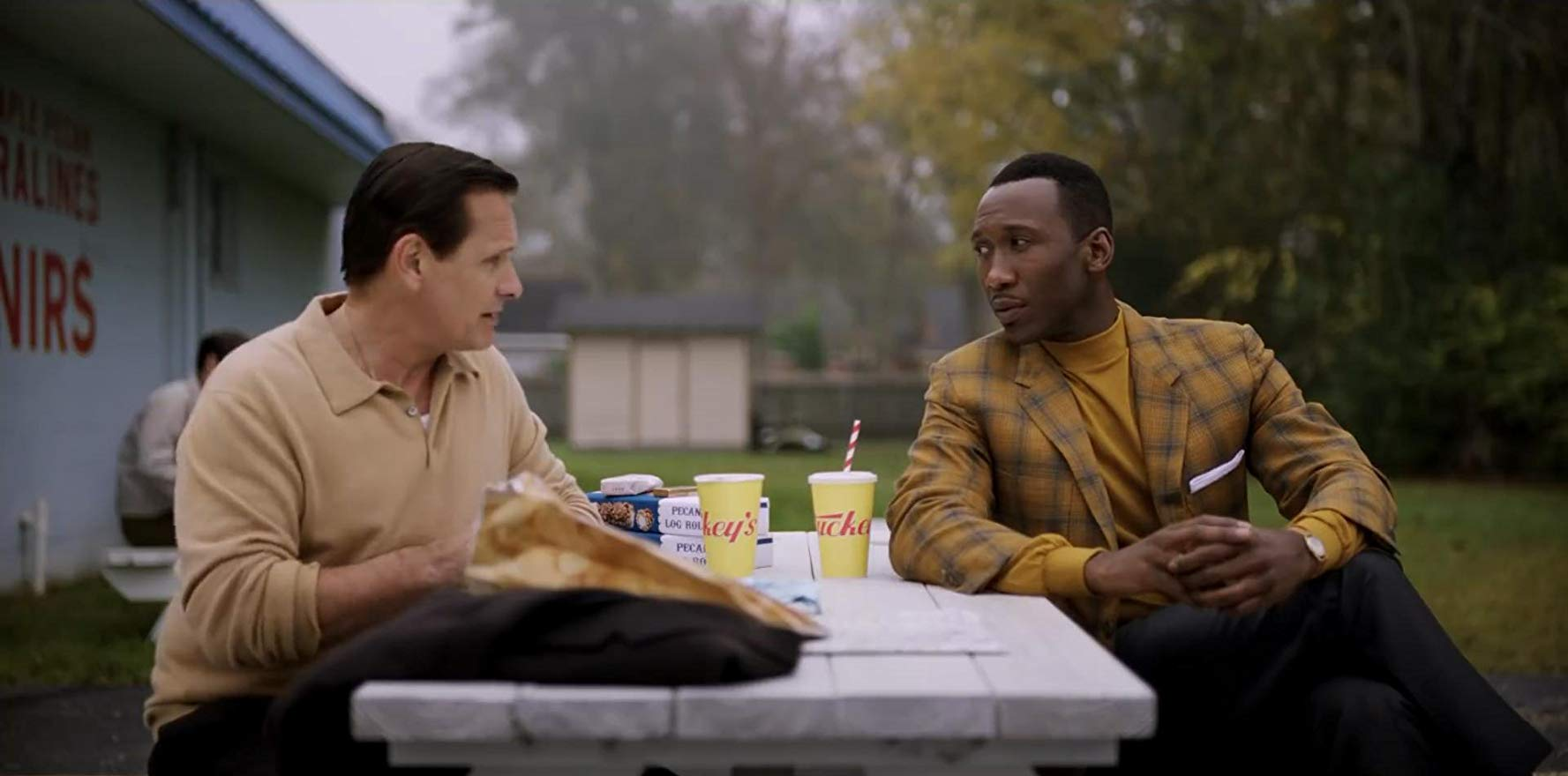 "Viggo Mortensen et Mahershala Ali dans ""Green Book"" de Peter Farrelly."