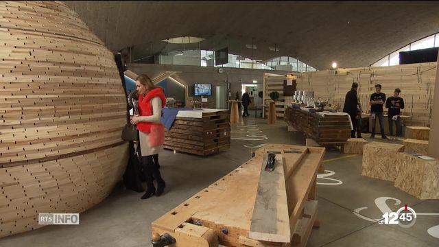 Le bois suisse, une ressource énergétique qui peut être mieux exploitée. [RTS]
