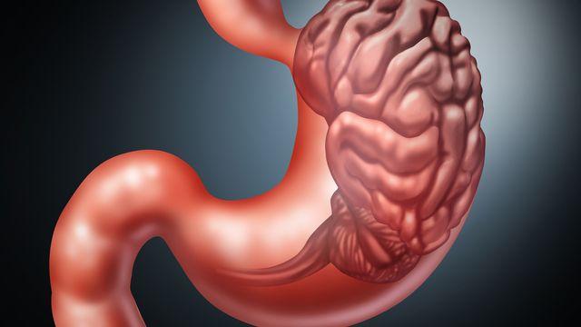 Des bactéries intestinales pourraient jouer un rôle dans la dépression. lightsource Depositphotos [lightsource - Depositphotos]