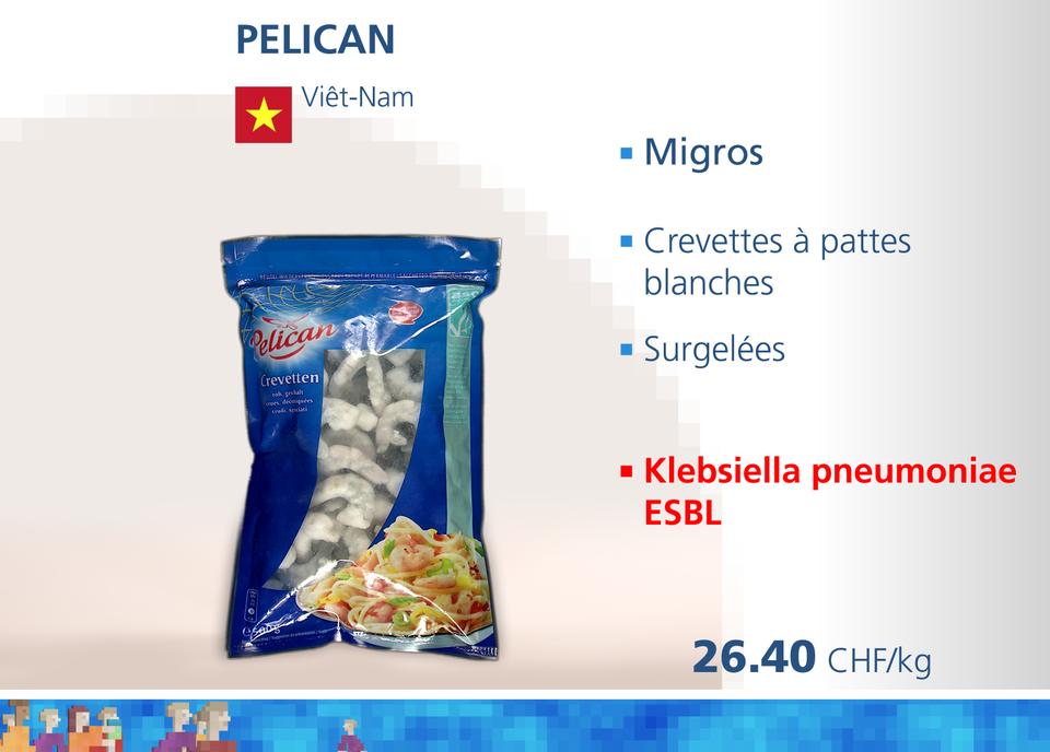 ABE crevettes WEB pelican [RTS]