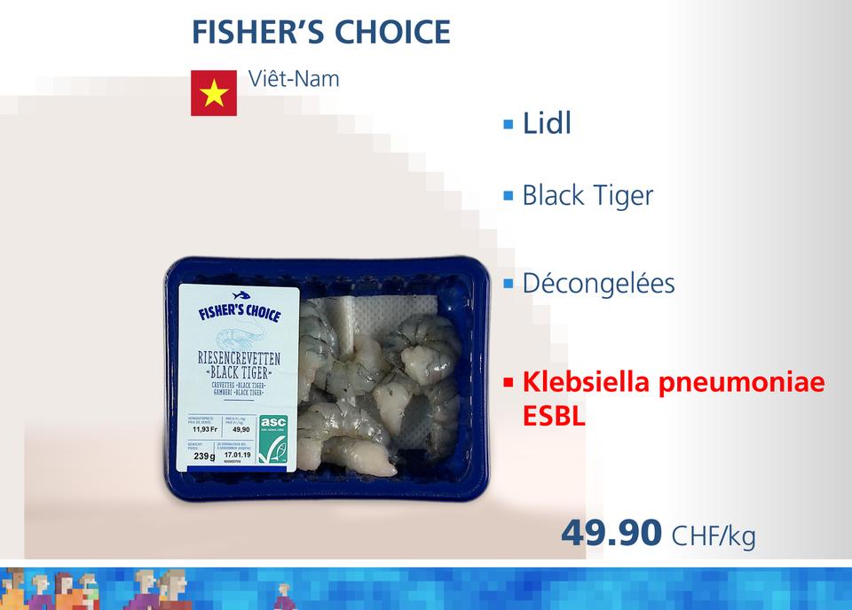 ABE crevettes WEB Fisher choice [RTS]