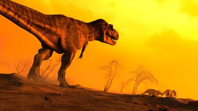 Le volcanisme serait à l'origine de la plupart des épisodes d'extinction massive des espèces. [Mark Garlick - Science Photo Library/MGA/AFP]
