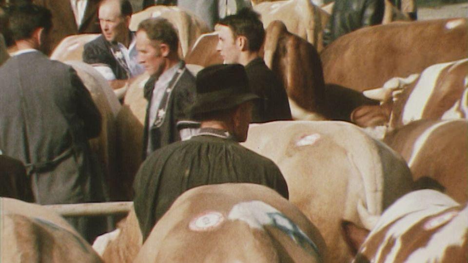 Au Marché-concours de Bulle, en Gruyère, en 1970. [RTS]